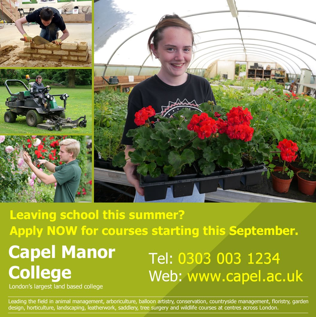 Are you a #school leaver this year and considering a #career in #gardening? Check out our #courses starting in Sept.  http://www. capel.ac.uk  &nbsp;  <br>http://pic.twitter.com/DoJ503v5LY