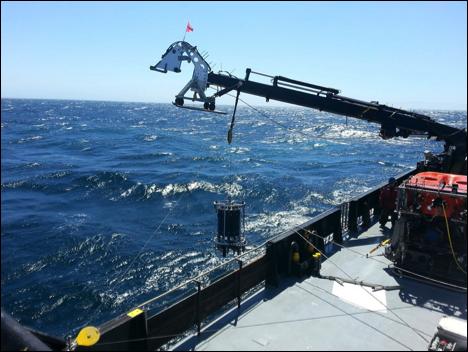 Ocean 'Dandruff' DNA to Better Study #MarineBiology via @ZonJerry  http:// bit.ly/2tA6I3i  &nbsp;  <br>http://pic.twitter.com/ikVHQfkuMg