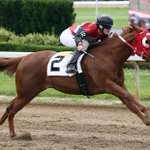 .@AjaxDowns Fast fillies fly in Futurity Trial in front of Huge Crowd https://t.co/WpeCNsAVVP