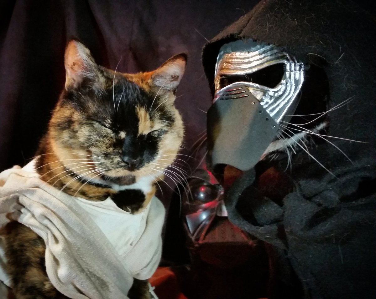 &quot;I know you&#39;ve seen the cat treats location... It&#39;s in there, and now you&#39;ll give it to me.&quot; ~ Cat&#39;lo Ren  #StarWars <br>http://pic.twitter.com/8wM2f92kSK
