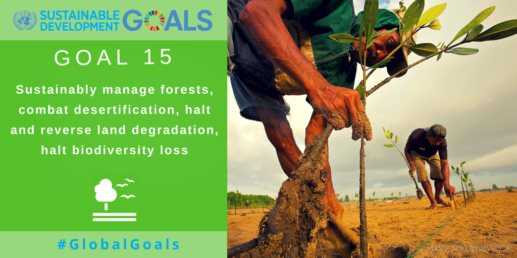 Sustainable Development Goal 15: Sustainable manage forests, combat desertification, halt & reverse land degradation, halt biodiversity loss
