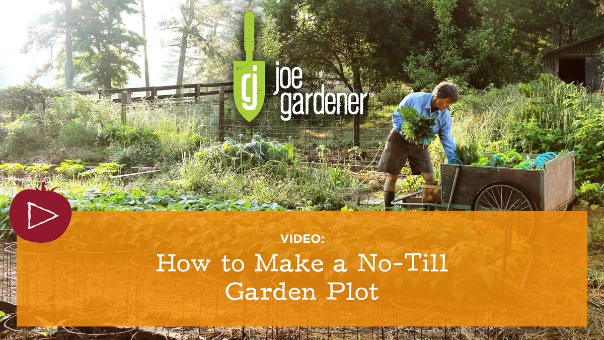 Video My Primer On The How Why No Till Gardening Is Best For Your Soil If You Love Your Soil Ditch The Tiller Bit Ly 2v4stia Pic Twitter Com