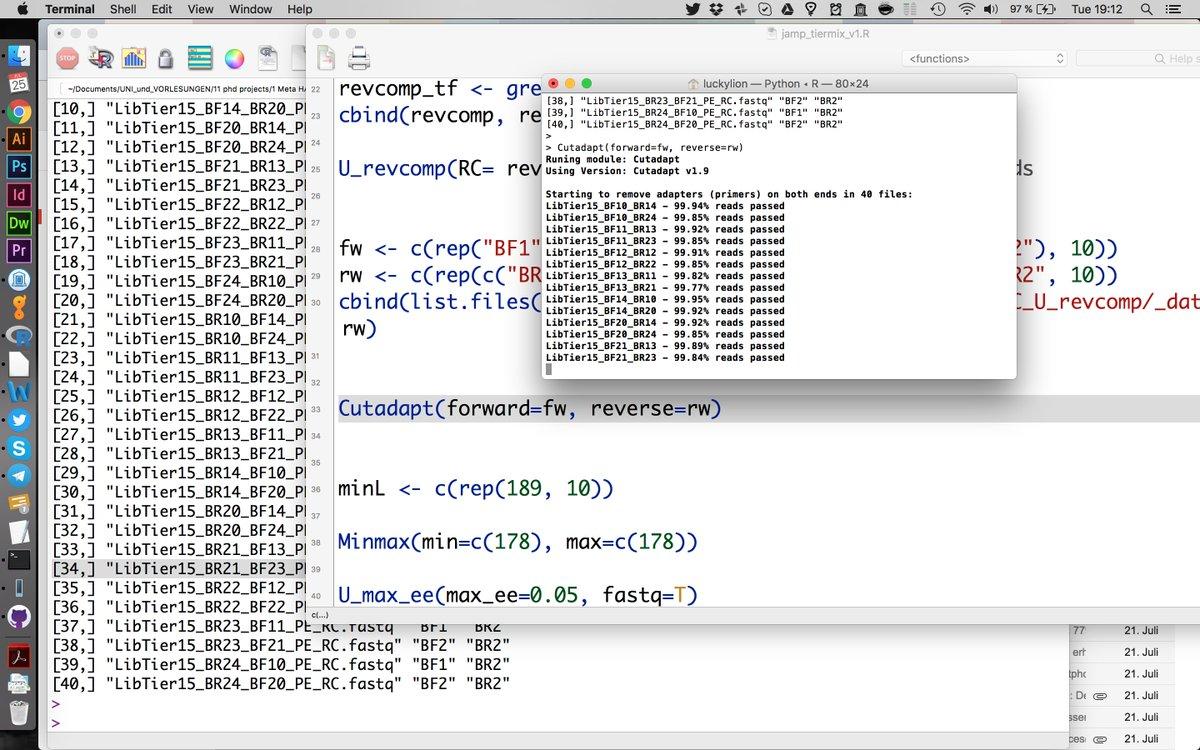 Java download rar file