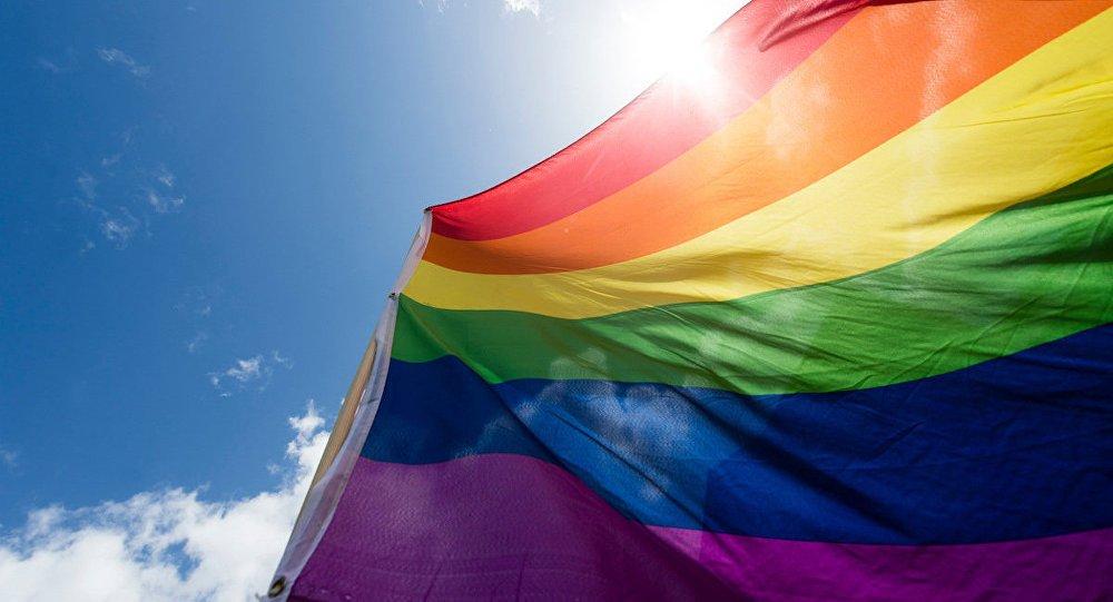 Suriye'de IŞİD'e karşı ilk LGBTİ askeri...