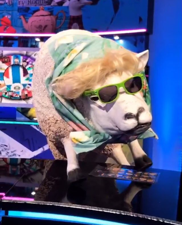 Dolly is having a lovely time today #BBBOTS https://t.co/ianMLy3ngT