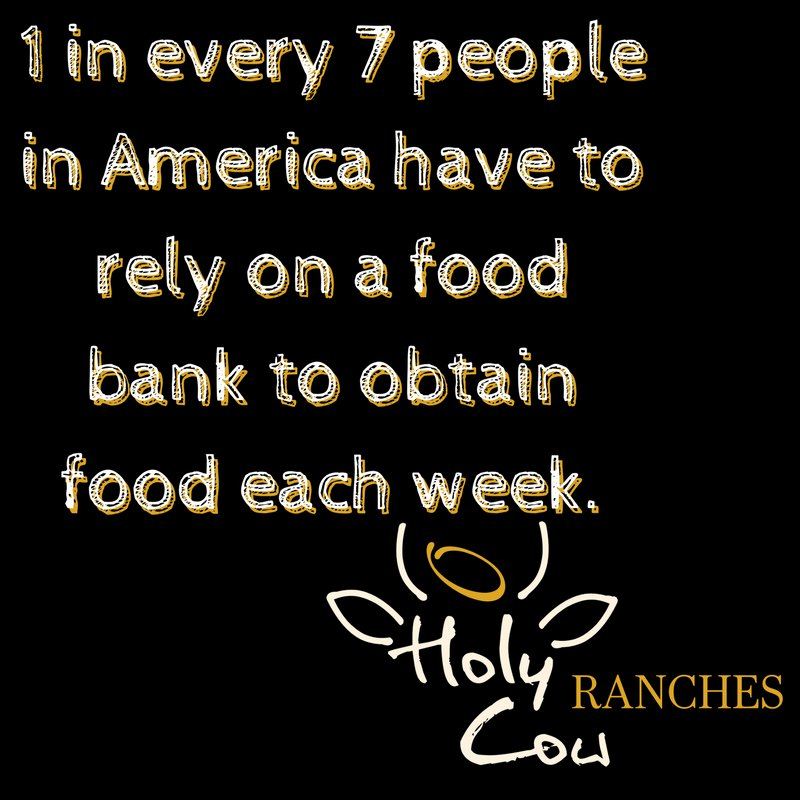 A sad fact that we can help treat by providing beef for those in need! Partner with us today! #HolyCowRanches #Nonprofit #fightinghunger<br>http://pic.twitter.com/ozXIJYlLuR