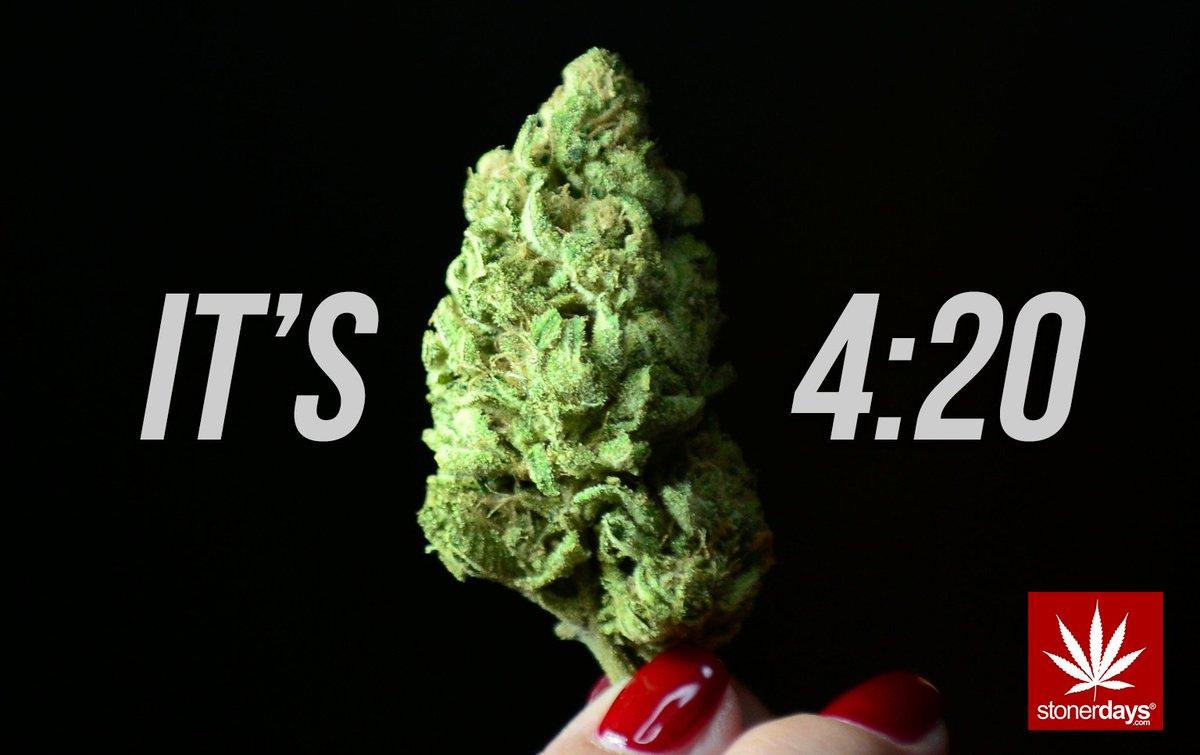 StonerDays On Twitter For 1 Hour Only Shirts Marked Down To 420 Tco DhWHLa1gQP Happy From California Stay Blazed Fam