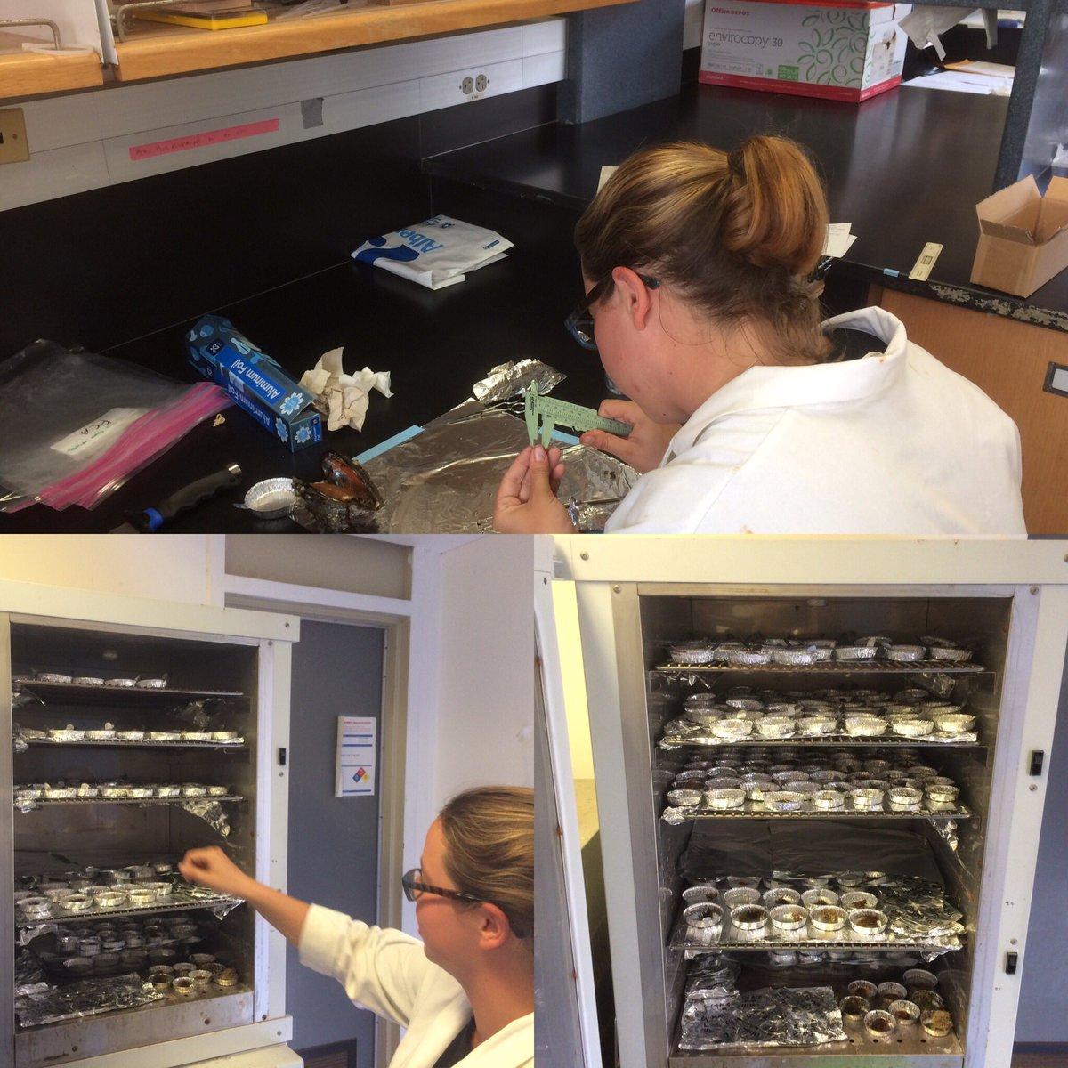 Another 26 hours in the life of a marine biologist. #csumb #catalina #marinebiology #usc #choosecsu<br>http://pic.twitter.com/EvjbTMztl2 &ndash; bij USC Wrigley Marine Institute