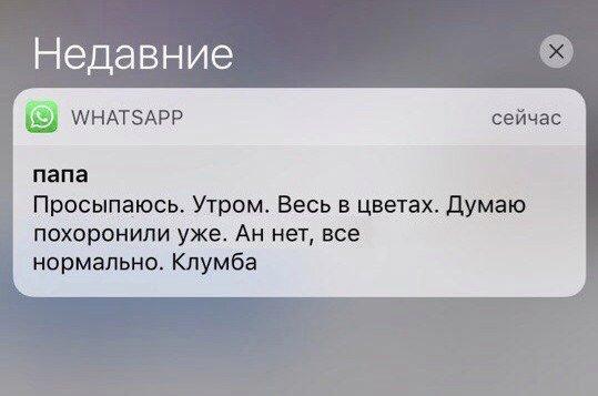 Депутат Николаевского облсовета заявил, что его избил после сессии председатель одного из райсоветов, - Нацполиция - Цензор.НЕТ 2129