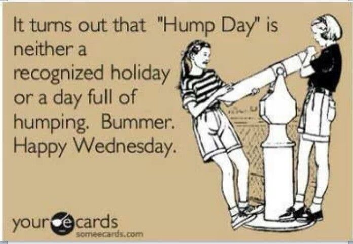 Happy Hump Day Quotes   Devora Wilde On Twitter Haha Happy Humpday Everyone Lol