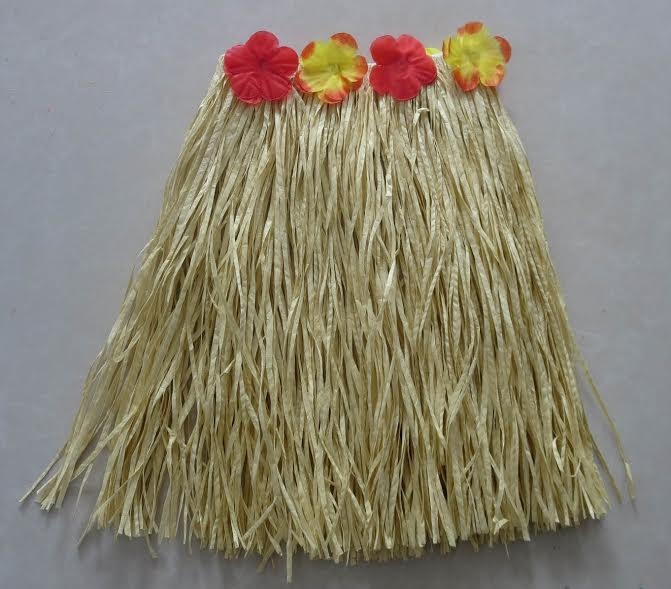 Image result for hula skirts funplace.ie