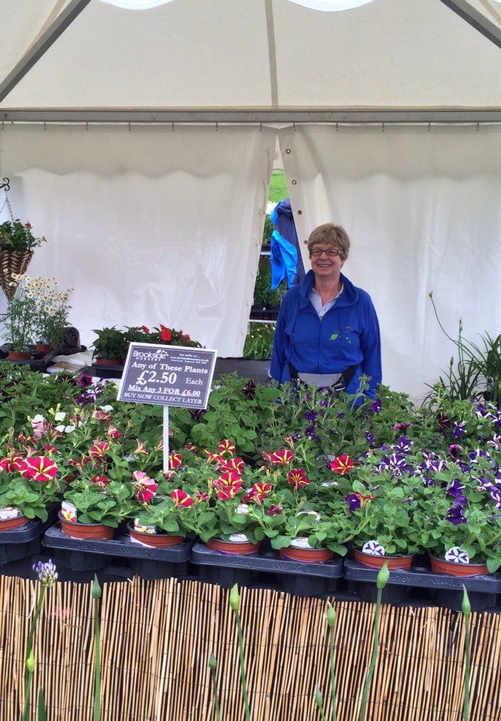 Brookside Nursery On Twitter We Will Be Flying In To The Whitacres And Shustoke Annual Show 29th July With Perennials Brighten Your Garden