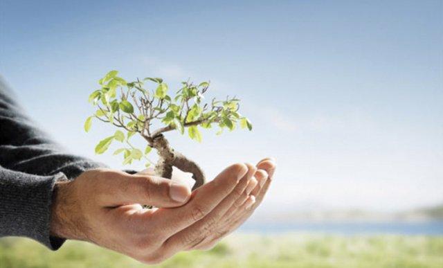 Охрана окружающей среды презентация на английском