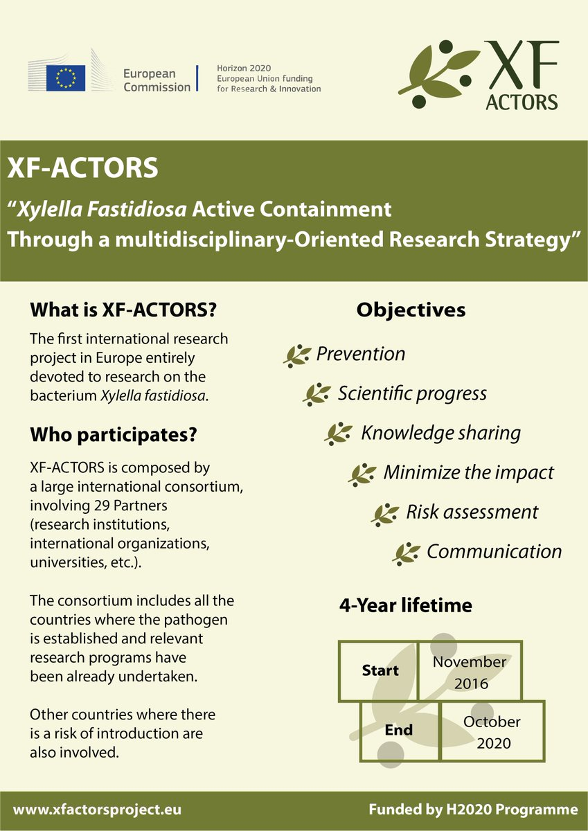 Do you want to know more about XF-ACTORS project? Take a look at our new factsheet!  http://www. xfactorsproject.eu/1st-xf-actors- factsheet-available/ &nbsp; …   #h2020 #research #xylella<br>http://pic.twitter.com/bxirWNyEm0