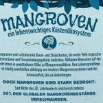 Was wisst ihr über Mangrovenwälder? Warum sie bedroht sind, erfahrt ihr hier: https://t.co/YSwalYUsTY #WorldMangroveDay