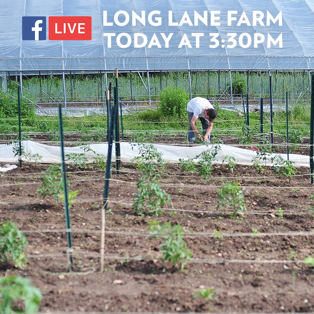 test Twitter Media - Today at 3:30pm join us for a Facebook LIVE virtual tour at Long Lane Farm, our student-run organic farm: https://t.co/QIow2Kufad https://t.co/HaT5U28t3p
