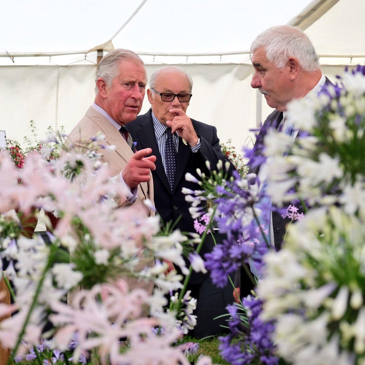 Обзор мероприятий принца Чарльза и герцогини Камиллы. Лето