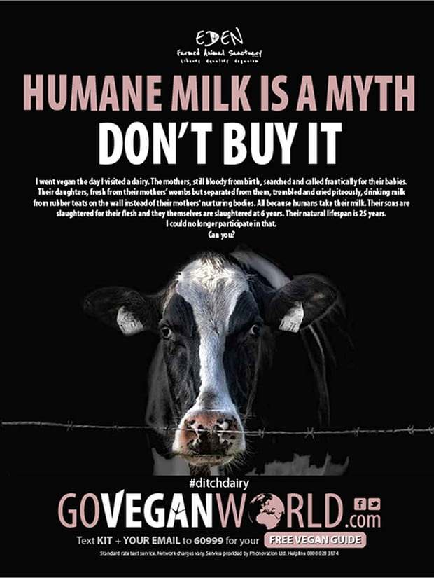 Yay! @Go_Vegan_World won against the #dairy industry -their claims that this ad was misleading were unfounded  https://www. theguardian.com/lifeandstyle/2 017/jul/26/humane-milk-is-a-myth-veganism-advert-cleared-by-standards-body &nbsp; …  #vegan <br>http://pic.twitter.com/jdKsdU75Bz