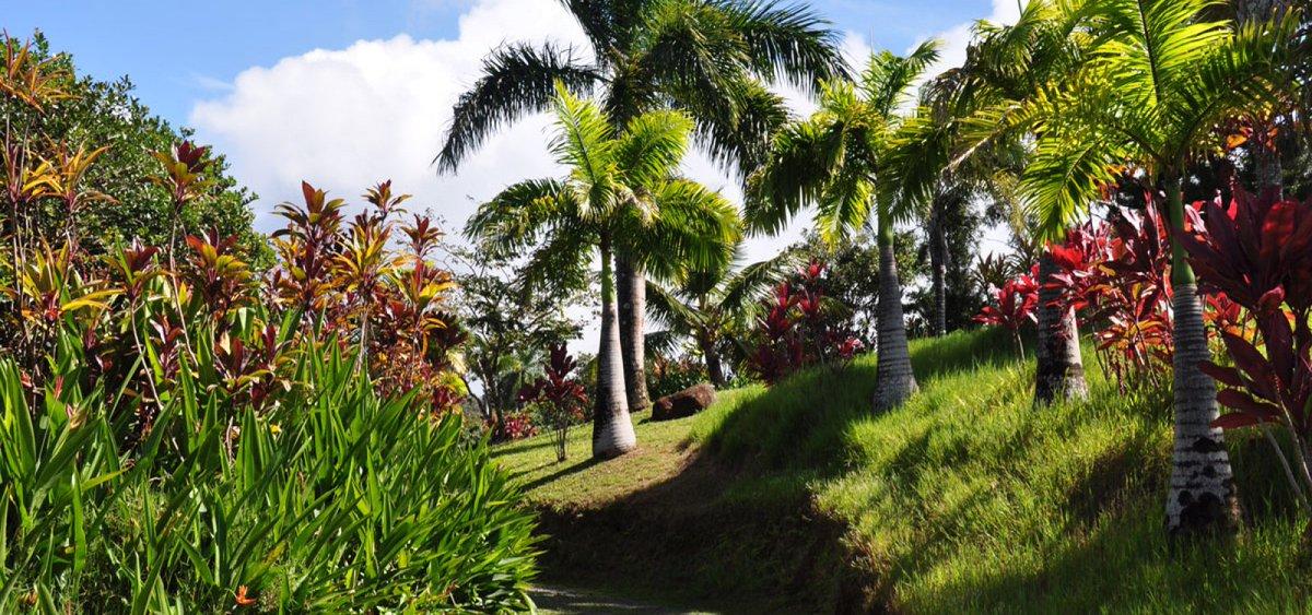 We Go Travel Go On Twitter The Real Life Garden Of Eden Https