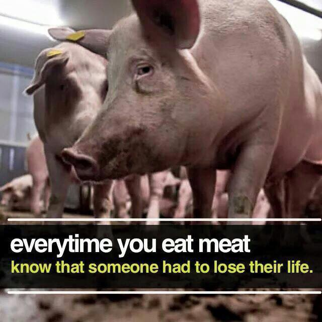 It&#39;s not me who has to decide who dies. #vegan <br>http://pic.twitter.com/0YrLT5lpUD