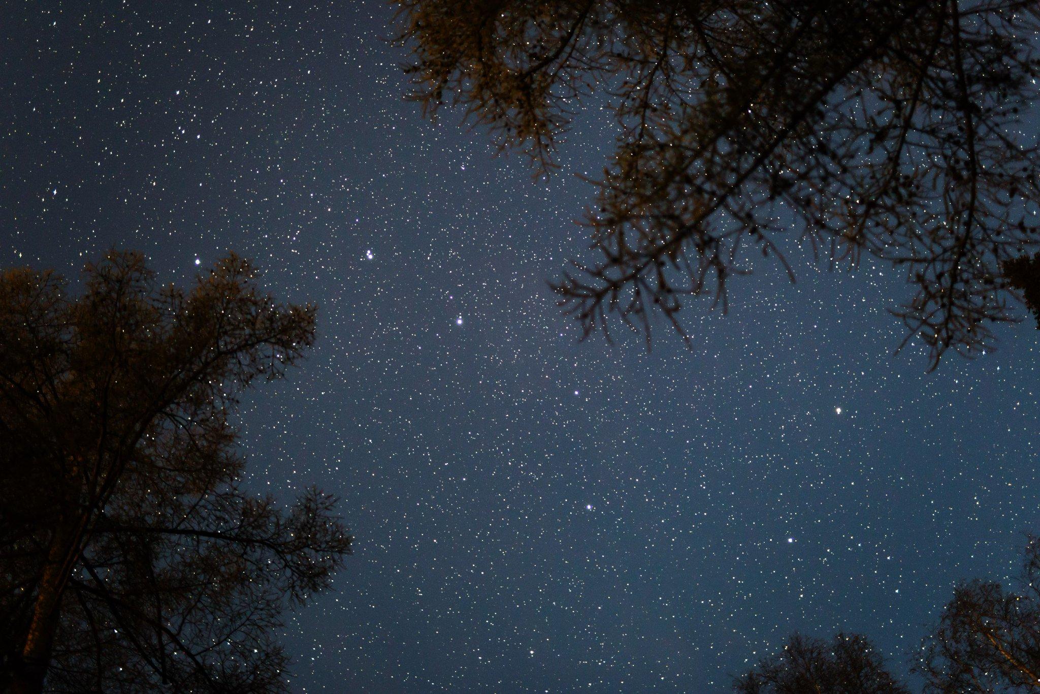 созвездие большой медведицы фото картинки нормальное что