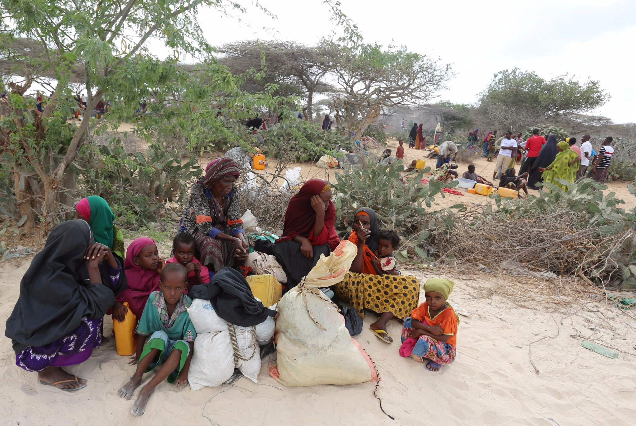 Thumbnail for Thousands Flee Attacks in Somalia: HRW Brief