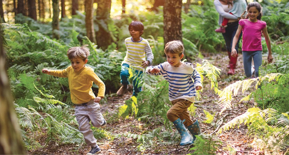 Outdoor Play Is Essential to Whole Child Development https://t.co/q581rJGUE2 https://t.co/GMZgKzU5T3