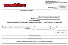 Образец приказа об утверждении формы расчетного листка