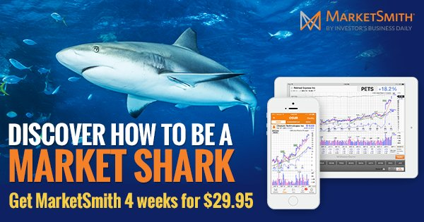 Sink your teeth into profits when you catch the next big stock winner! Try MarketSmith & take a 4-week trial today! https://t.co/cslOrckaZp