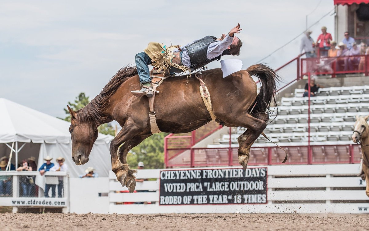 I'll be lookin' for eight when they pull that gate! @LensmenProject #cheyennefrontierdays @ProRodeoOnline Photo by RDunn