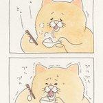 小籠包。4コマ漫画ネコノヒー「決断」/ Soup dumpling  q-rais.com/entr…