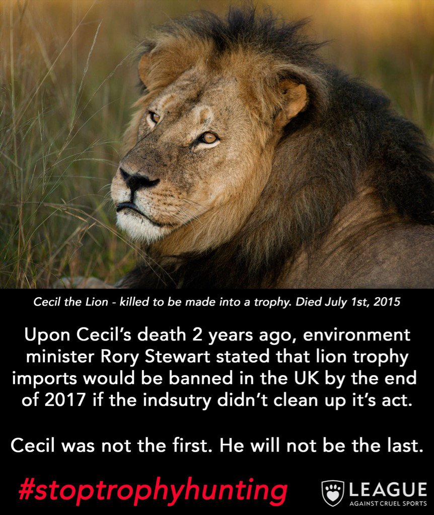 We need to ban trophy hunting NOW. It's wrong, cowardly and hitting lion populations. RT if you agree.