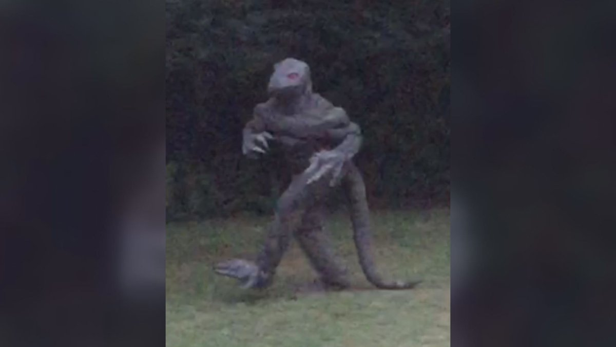SC 'Warns' of Possible Lizard Man Sightings During Eclipse https://t.co/15a6j8HUn8 #scnews #sctweets