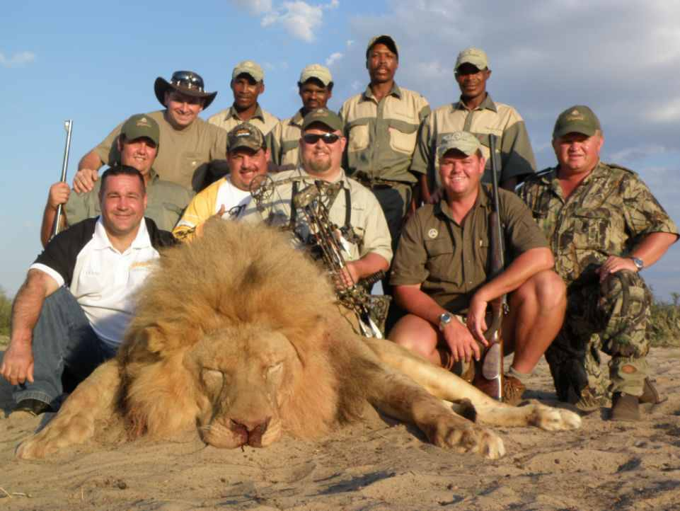 Let's celebrate #WorldLionDay today by preserving these magnificent creatures - not killing them for 'sport'. Pls RT
