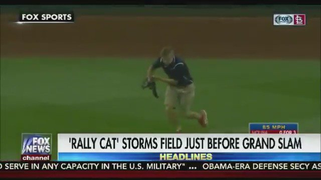 A 'rally cat' is born! Cat runs onto field - one pitch later? A grand slam for the Cardinals! https://t.co/BEp9zD0v3f