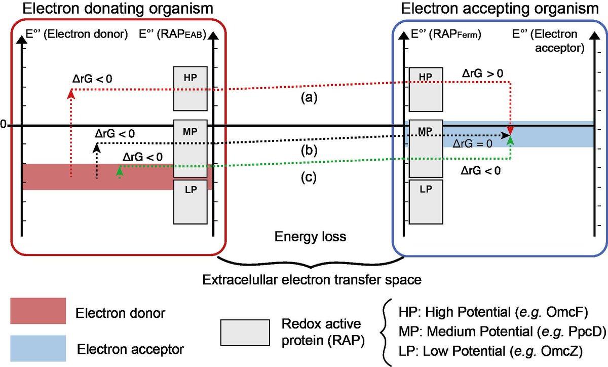 مفاهیم فیزیک هسته ای