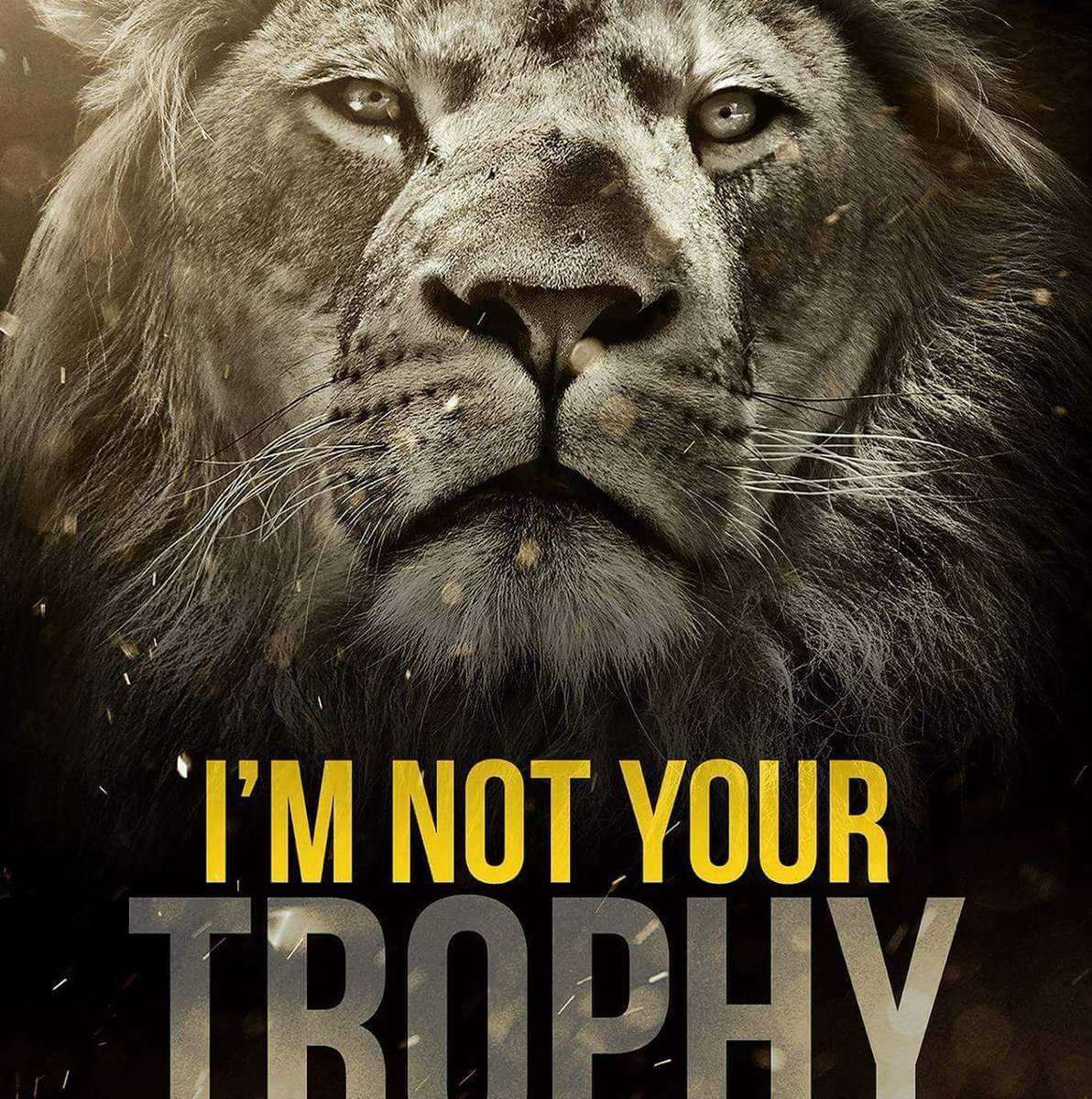 It's still legal to kill lions for 'sport'. RT if u think Trophy Hunting has no place in 21st Century #WorldLionDay