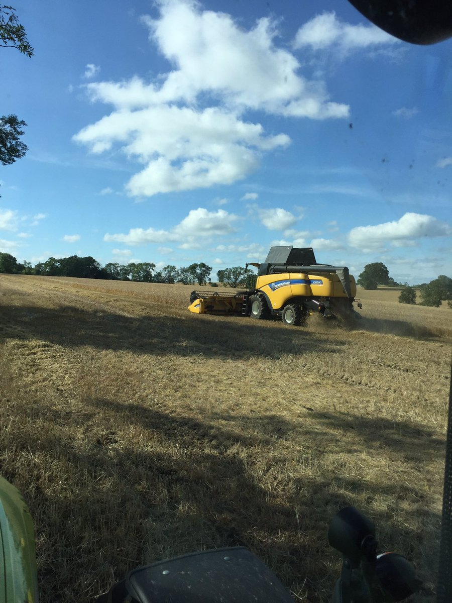 Cracking on with the feed barley harvest...