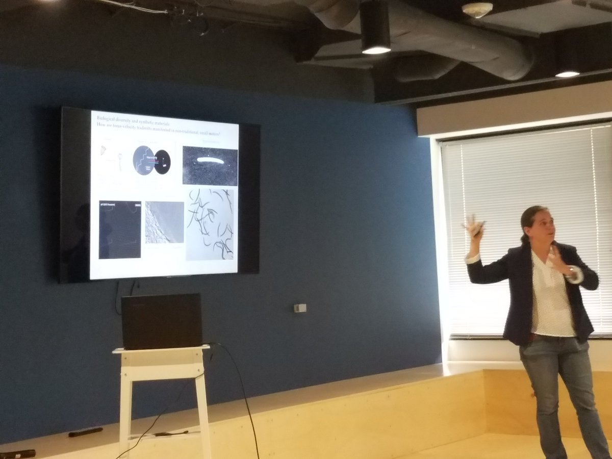 Dr. Bergbreiter talks scalable synthetic design based on biological systems. #2017MURIreview #thisisdodscience @ArmyResearchLab @UMDRightNow<br>http://pic.twitter.com/3348IDz1p6