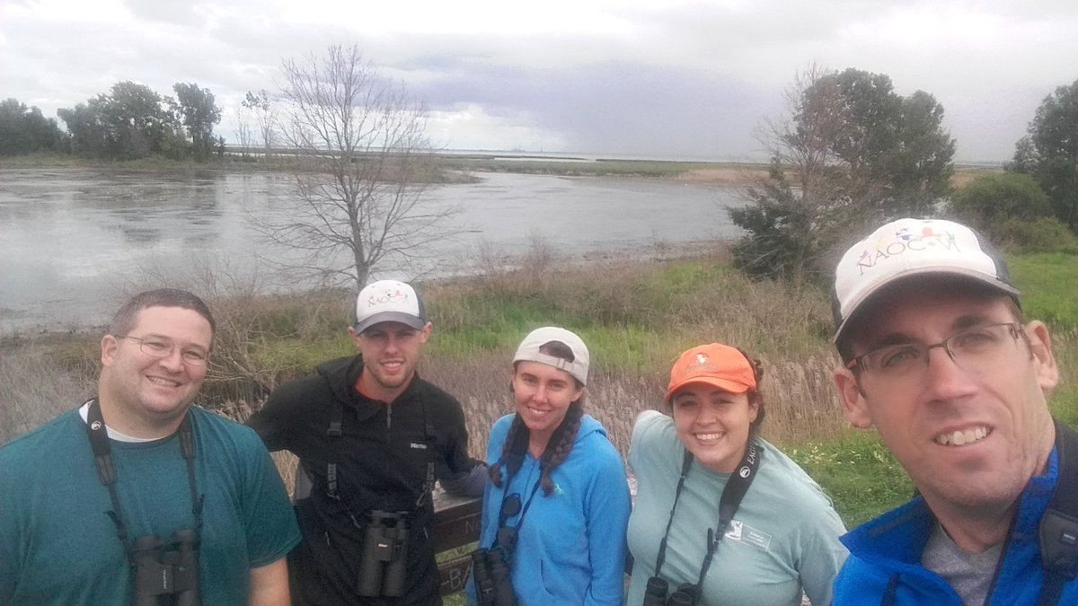 #scientistswhoselfie Loss Lab members and alum birding at Nayanquing Point on Lake Huron during #AOSSCO17 @Elmore_Ecology @FollowsFeathers<br>http://pic.twitter.com/wHTcJq26N9