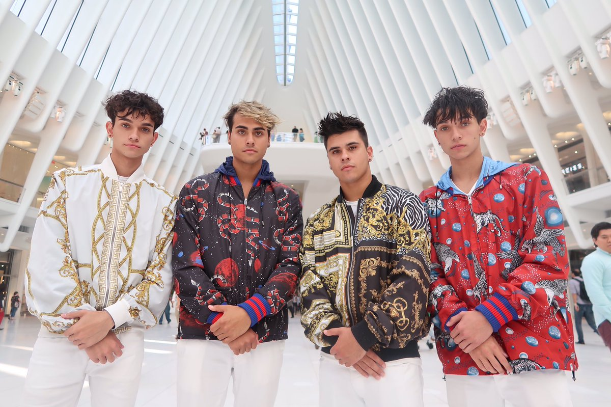 Image result for dobre brothers on the real tho