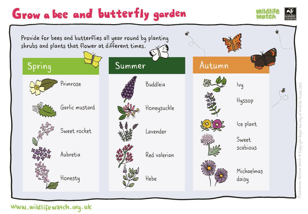 A project for the weekend? #Bristol #parents #wildlife @Team4Nature300<br>http://pic.twitter.com/o0CrOsW7Gy