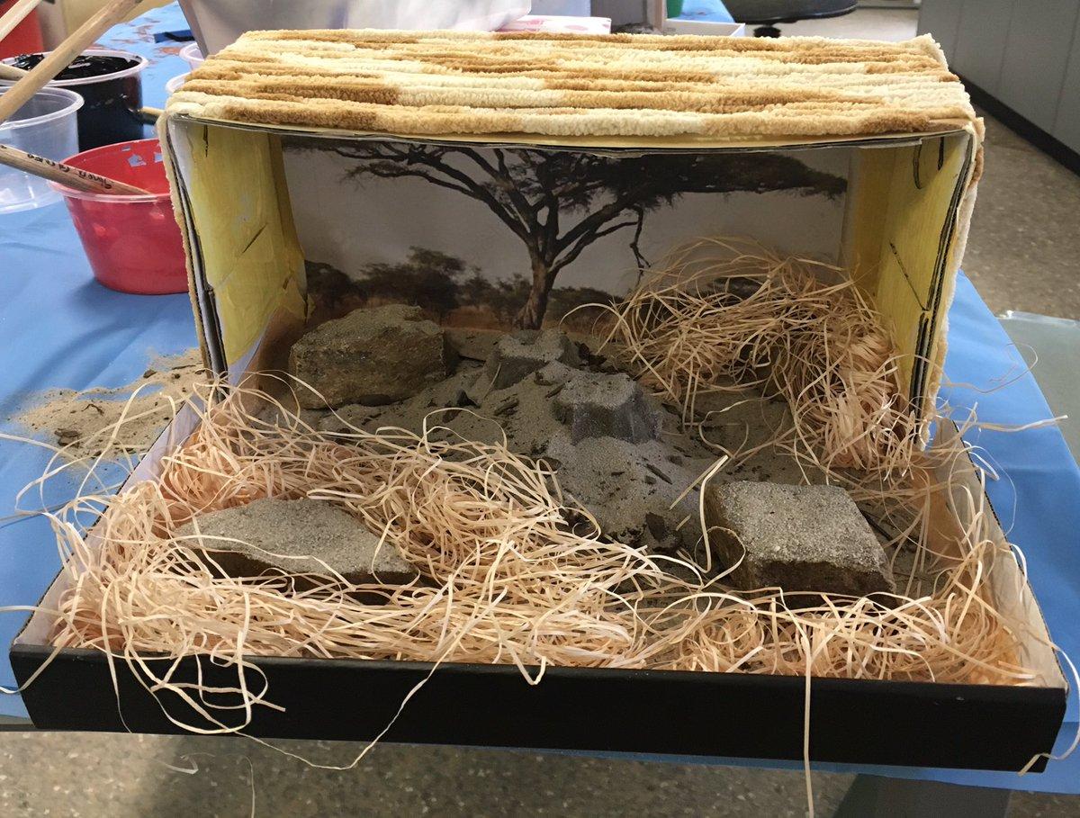 year 2f on twitter a meerkat and black mamba snake habitat diorama