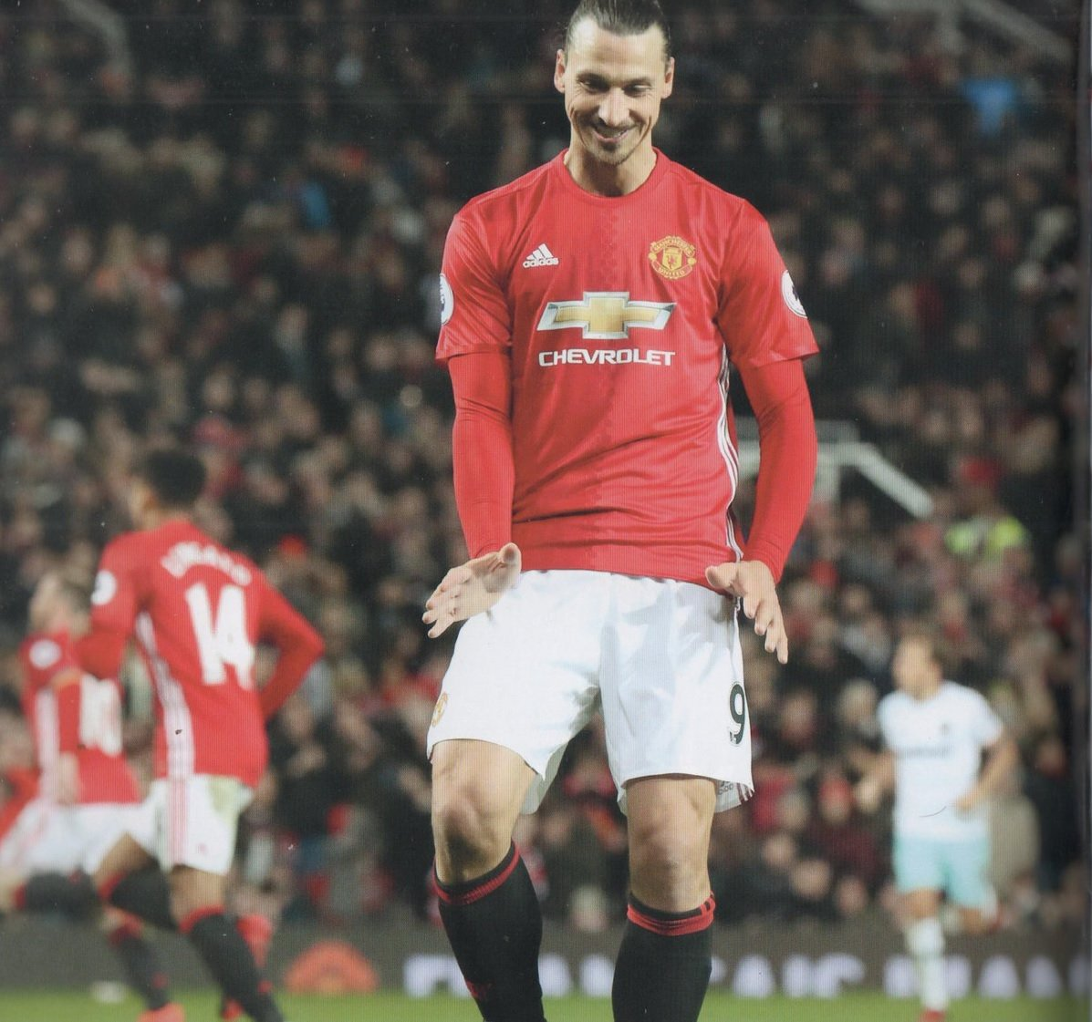Could We See The Return Of This Lion, King,Swede (In Short Zlatan) Return To United For Unfinished Business? #MUFC #Zlatan #MUFC_FAMILY<br>http://pic.twitter.com/4AI3b3fQXW