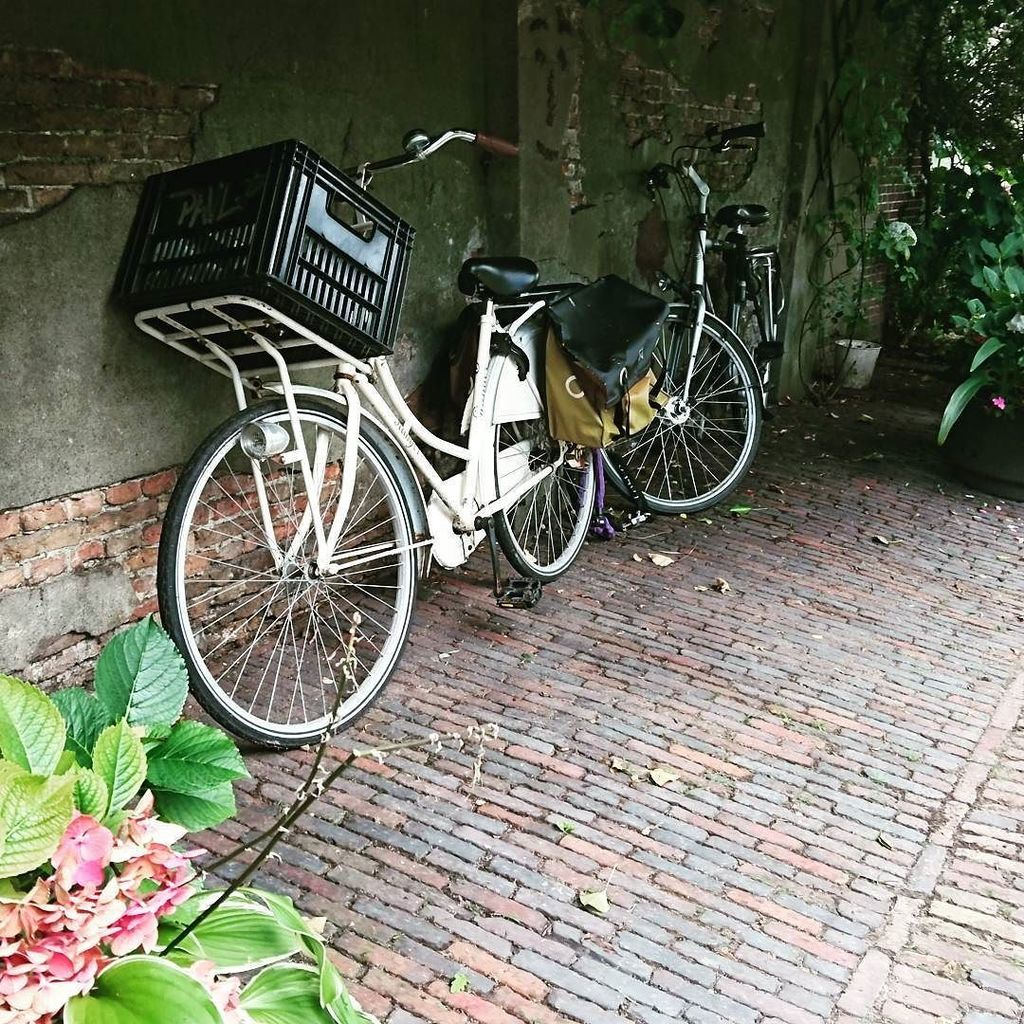 Typical Dutch street scene: bicycles are parked everywhere.  #Leiden #bicycle #cyclisme #urbanexplorer #byebyeroam…  http:// ift.tt/2hQjQjl  &nbsp;  <br>http://pic.twitter.com/P66098HwX4