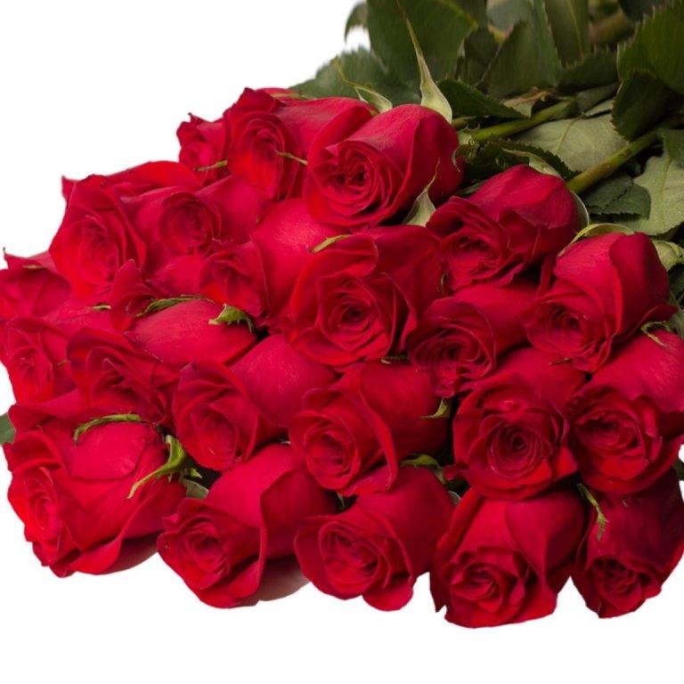 Букет роз гифы картинки