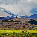 #Fraud charge for #NewZealand wine company Southern Boundary Wines for mislabelling wines destined for export https://t.co/KNwRQFmI3X