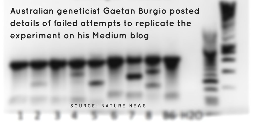 #NgAgo not competitor to #CRISPR #Cas9 retracted by @NatureBiotech lacks #reproducibility @gaetanburgio #openscience  https:// buff.ly/2uxgLqx  &nbsp;  <br>http://pic.twitter.com/Gm2jNbA7Ef