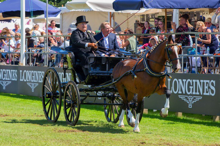 Image result for Olympic gold medallist Nick Skelton given award in recognition of his Hickstead achievements