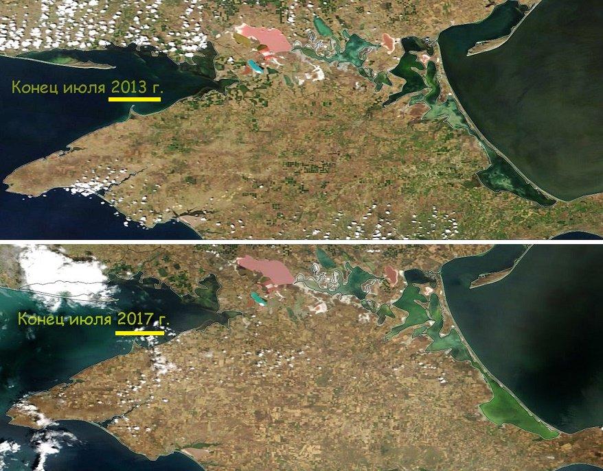 С начала оккупации площади озимых посевов в Крыму сократились на 85%, - МинВОТ - Цензор.НЕТ 8796